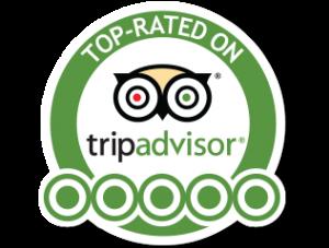 tripadvisor Siesta Key hotel